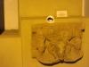 APE in Museum