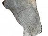 Dhofar Chrondrite